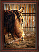 Sunset Corral – Framed Giclee Canvas by Mitchell Mansanarez