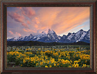 Teton Gold – Framed Giclee Canvas Art Prints by Mitchel Mansanarez