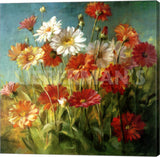Danhui Nai Painted Daises Gallery Wrapped Canvas Art Print