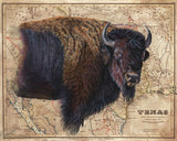 Bison Map by Patty Pendergast