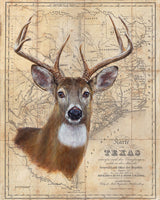 Buck Map by Patty Pendergast