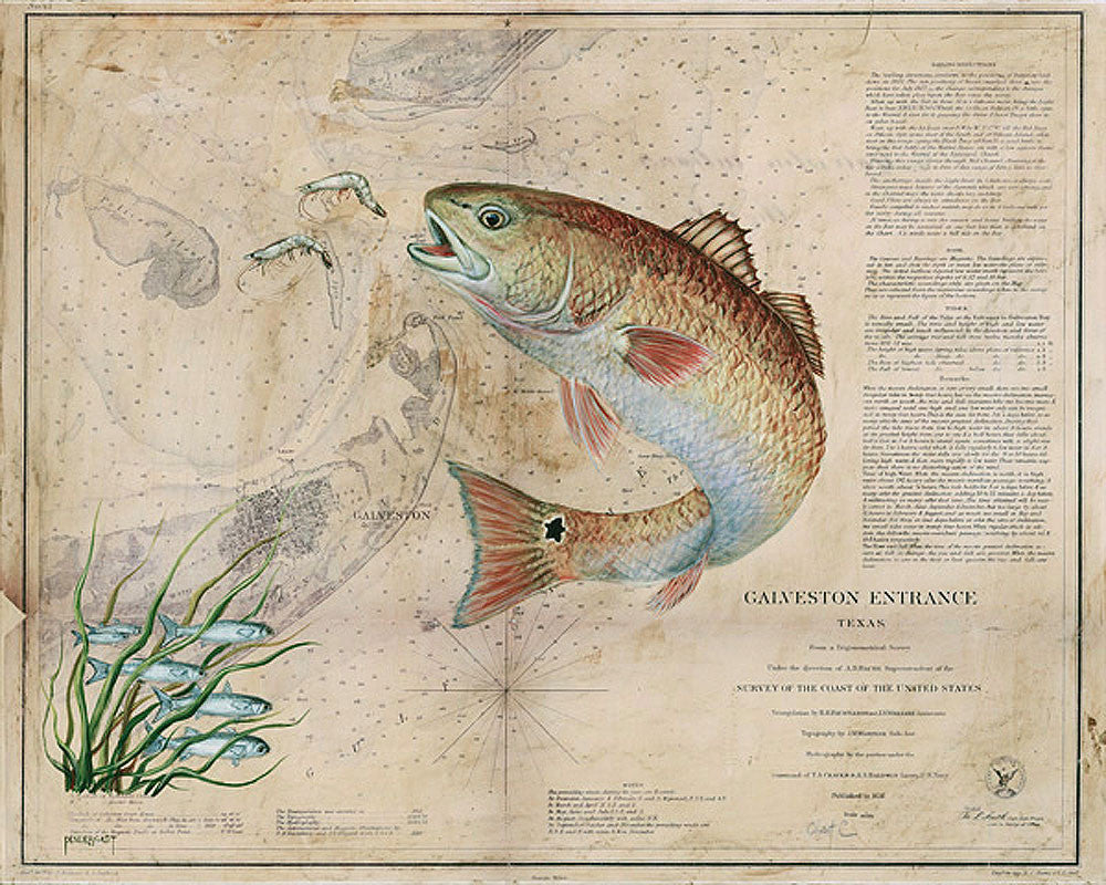 Texas Redfish Map by Patty Pendergast