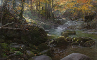 Laurel Creek by Phillip Philbeck