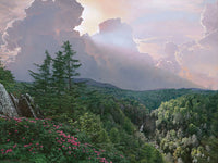 Where the Rhododendron Grow by Phillip Philbeck