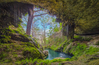 Westcave Preserve Waterfall 1 by Rob Greebon