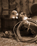 How Bout a Kiss Sepia by Robert Dawson