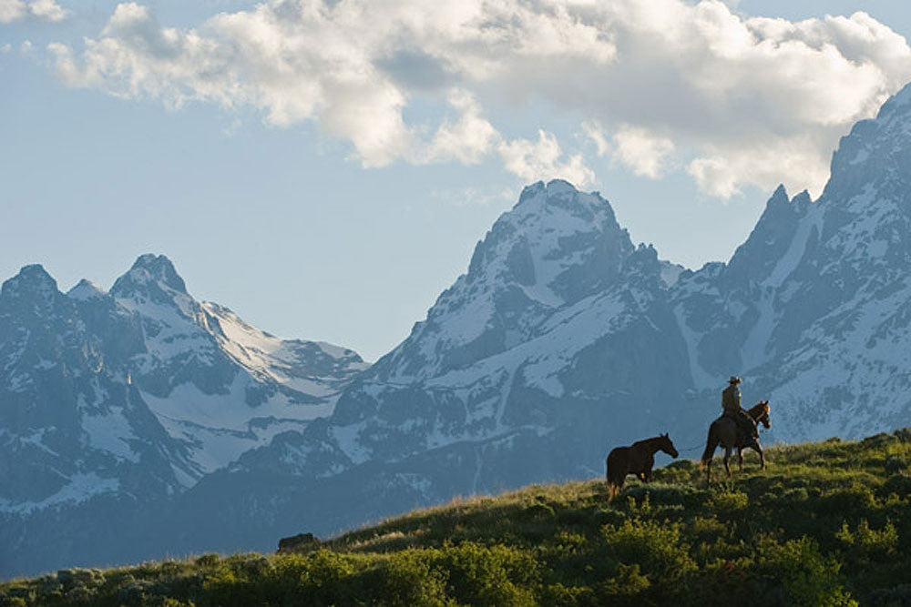 Into the Tetons by Robert Dawson