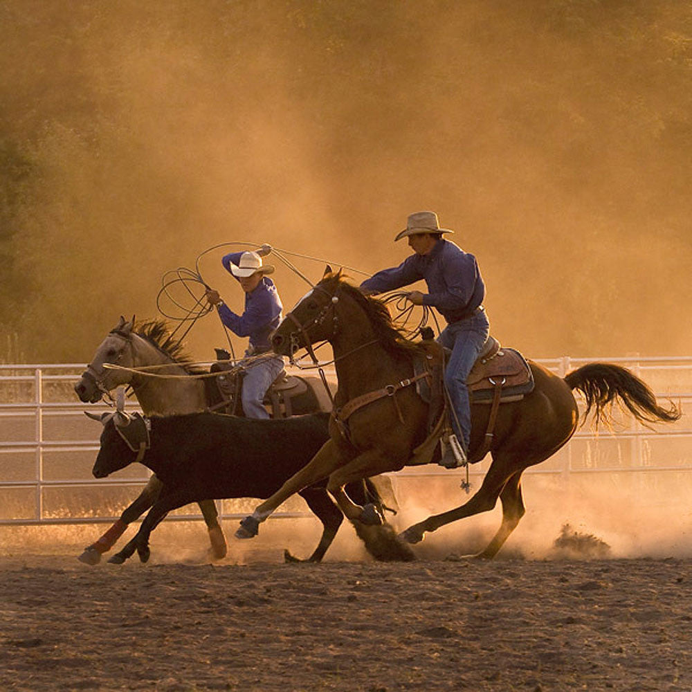 Roping on the Ranch II by Robert Dawson