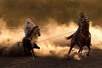 Roping on the Ranch by Robert Dawson