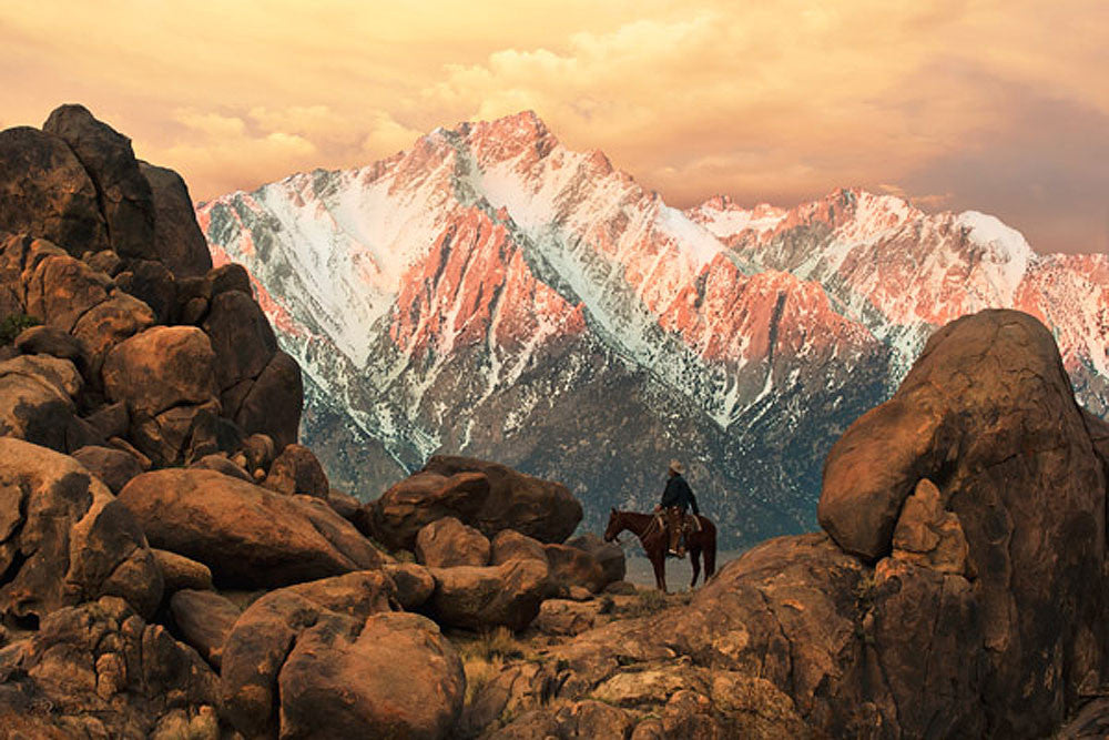 Sierra Morning by Robert Dawson