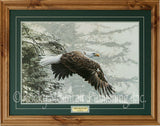 Through the Firs Framed Print by Ron Parker
