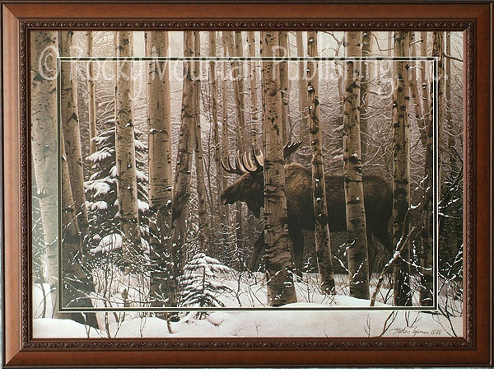 A Walk in the Woods Framed Print by Stephen Lyman