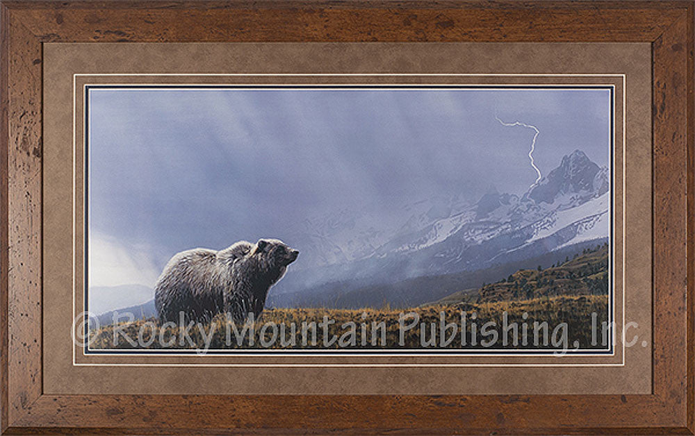 Storm Watch Framed Print by Terry Issac
