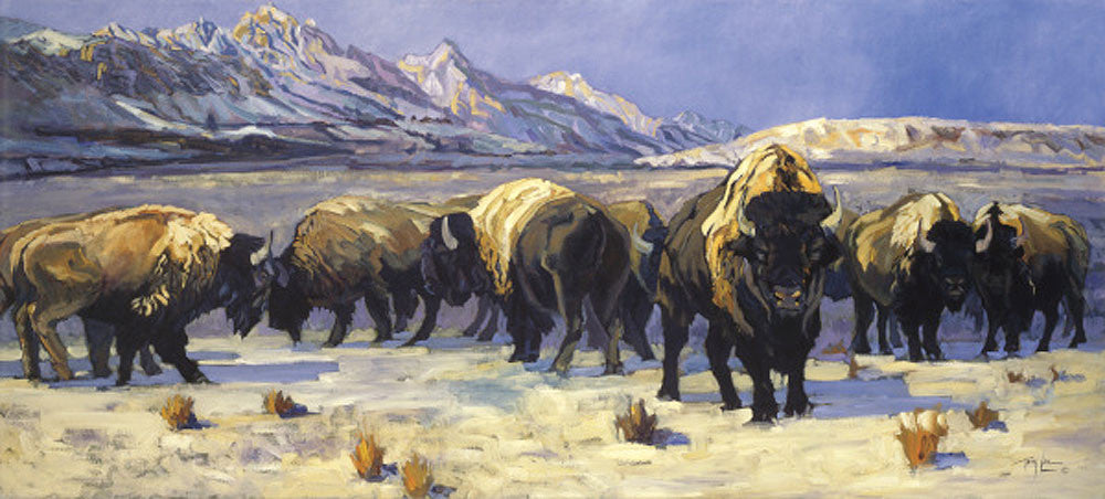 Teton Bison by Terry Lee