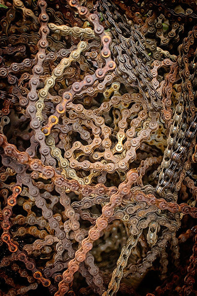 Chain Gang by Todd Van Fleet