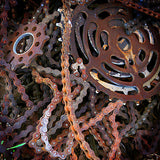 Chains and Cranks by Todd Van Fleet