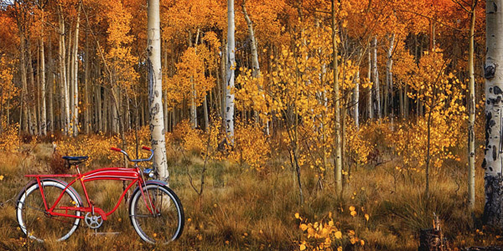 Kenosha Pass by Todd Van Fleet