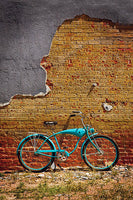 Schwinn Bricks by Todd Van Fleet