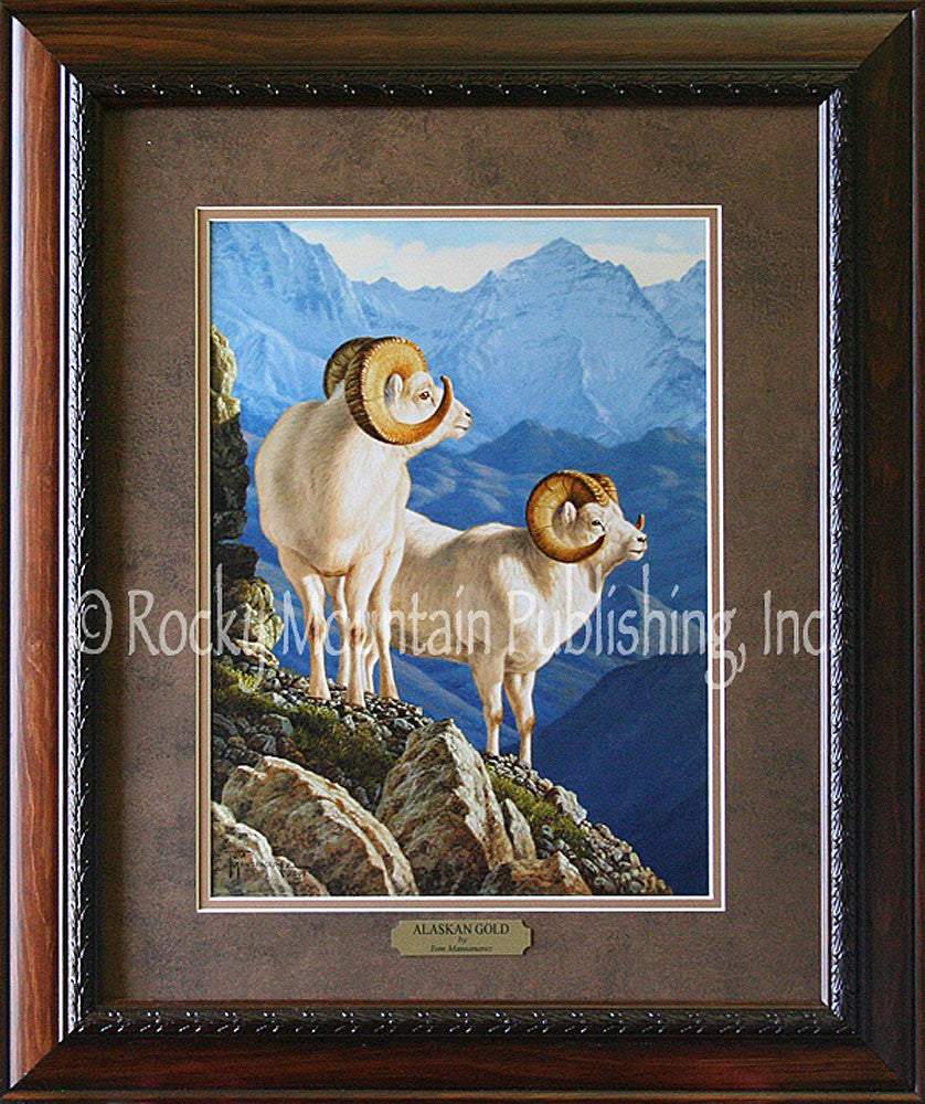 Alaskan Gold – Framed Print by Tom Mansanarez
