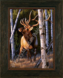Autumn Glow – Framed Giclee Canvas by Tom Mansanarez