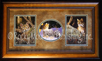 Bobcat – Framed Triple by Tom Mansanarez