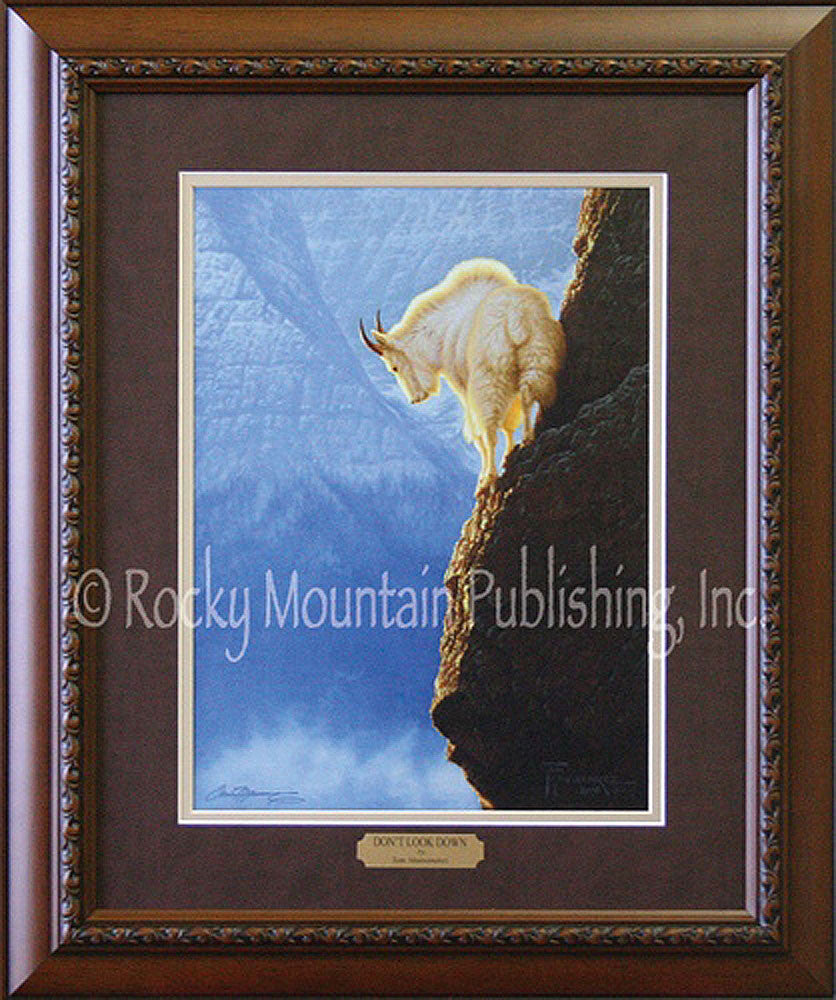 Dont Look Down – Framed Print by Tom Mansanarez
