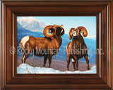 Rumbling Rams – Framed Giclee Canvas by Tom Mansanarez
