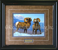 Rumbling Rams – Framed Print by Tom Mansanarez