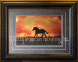 The Forgotten Horse Framed Print by Tony Stromberg