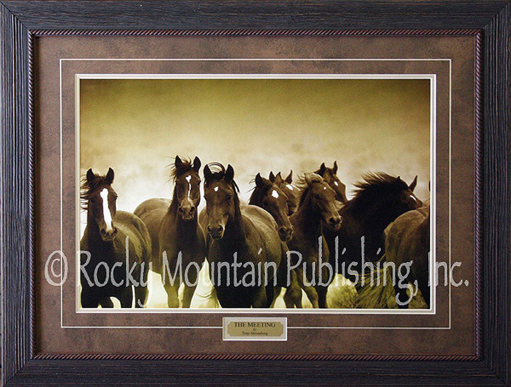 The Meeting Framed Print by Tony Stromberg
