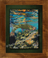 Freestone Framed Print by Travis Sylvester