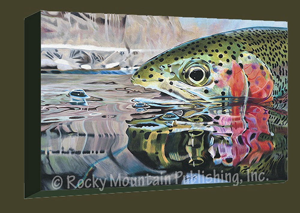 Rainbow Reflections Gallery Wrapped Giclee Canvas by Travis Sylvester