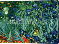 Vincent Van Gogh Irises in the Garden Saint Remy 1889 Canvas Wrapped Art Print