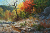Radiance of Autumn Art Prints by William Hagerman Artist