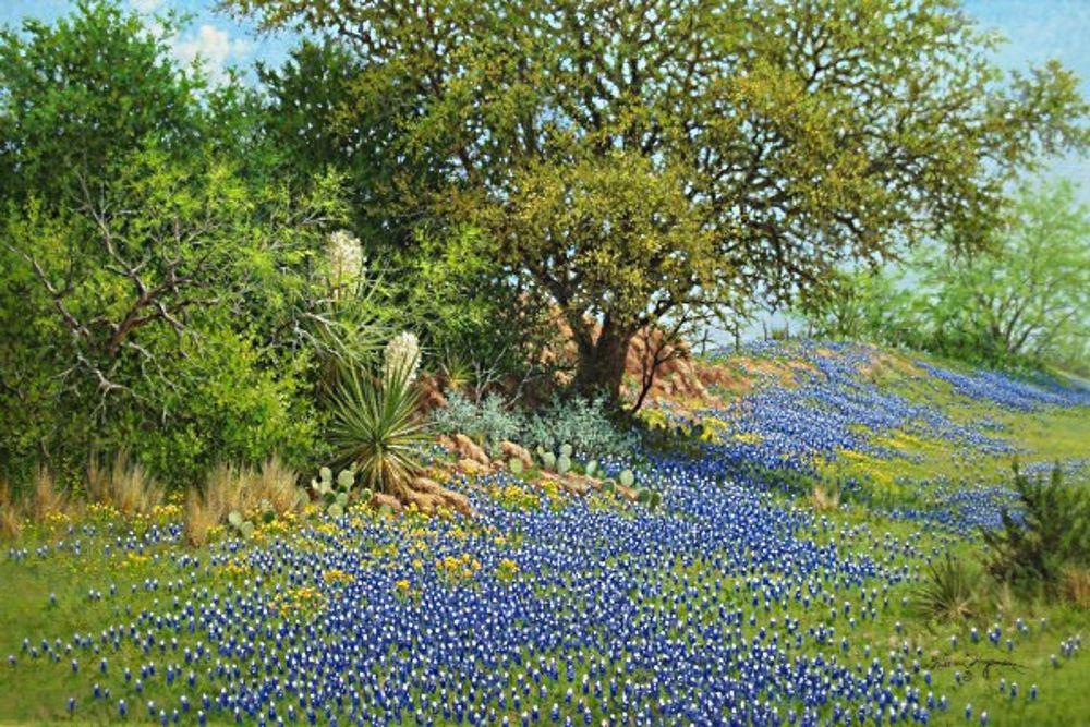 A Blue Texan Spring – Art Prints by William Hagerman