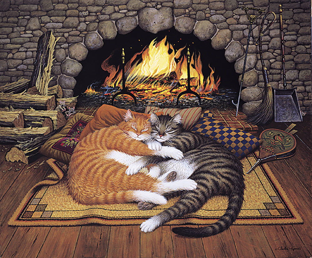All Burned Out Art Prints By Charles Wysocki Artist