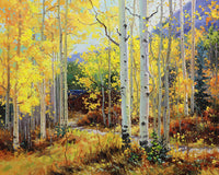 Aspen Cabin Art Prints by Gary Kim