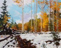 Aspen Vista Snow Art Prints by Gary Kim