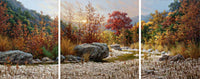 Autumn Triptych – Art Prints by William Hagerman