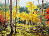 Backlit Aspen Grove Art Prints by Gary Kim