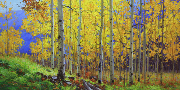 Gall Aspen Art Prints by Gary kim
