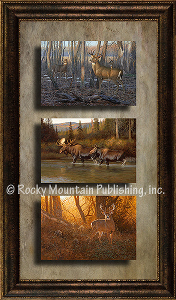 Big Game – Triple Giclee Canvas Framed Art Prints by Hayden Lambson