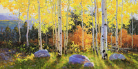 Horizontal of Aspen Vista Sunset Art Prints by Gary kim