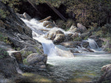 Living Water Art Prints by Larry Dyke