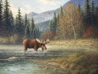 Moose Creek Art Prints by Jack Terry