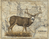 Mule Deer Art Prints by Patty Pendergast
