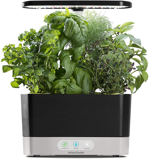 Grow your own vegetable garden from your kitchen!