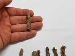 Fulgurite - Petrified Lightning Strikes - Earth's Treasures