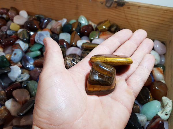 Tiger's Eye Tumbles XL - Earth's Treasures