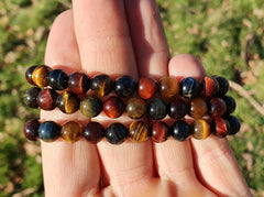 Tiger's Eye Multi-color Bracelet 8mm - Earth's Treasures